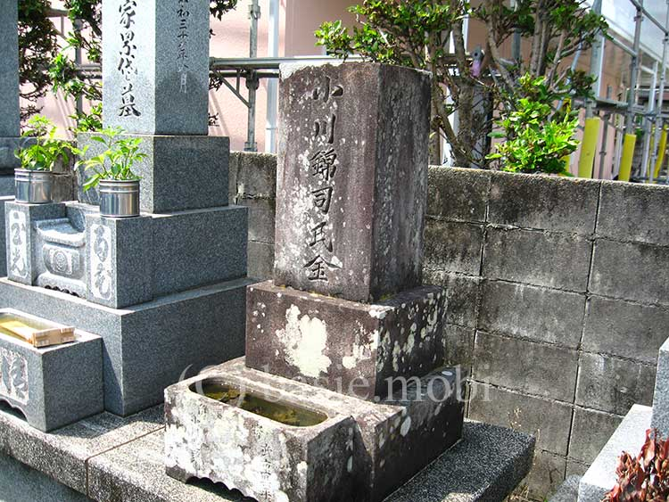 ベイシーフォトギャラリー,徳島の古戦場